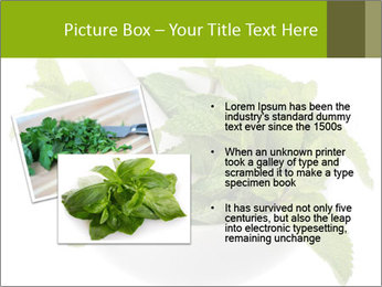 Mortar with mint isolated PowerPoint Template - Slide 20