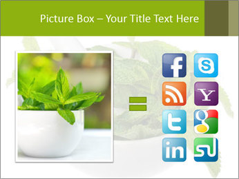 Mortar with mint isolated PowerPoint Template - Slide 21