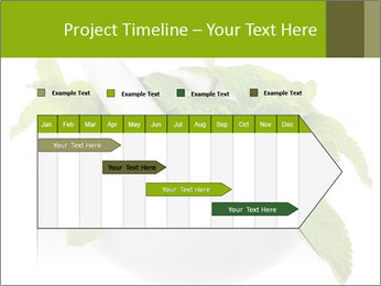 Mortar with mint isolated PowerPoint Template - Slide 25