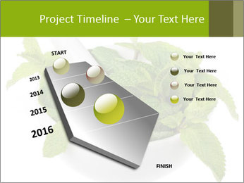 Mortar with mint isolated PowerPoint Template - Slide 26