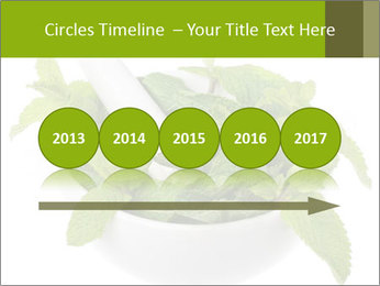 Mortar with mint isolated PowerPoint Template - Slide 29