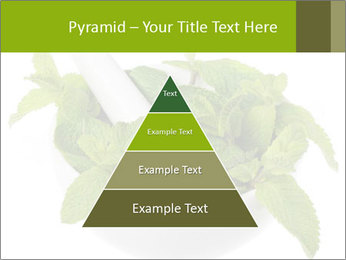 Mortar with mint isolated PowerPoint Template - Slide 30