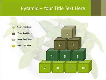 Mortar with mint isolated PowerPoint Template - Slide 31