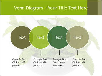 Mortar with mint isolated PowerPoint Template - Slide 32