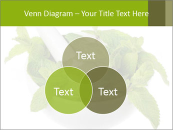 Mortar with mint isolated PowerPoint Template - Slide 33