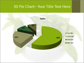 Mortar with mint isolated PowerPoint Template - Slide 35