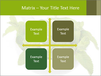 Mortar with mint isolated PowerPoint Template - Slide 37