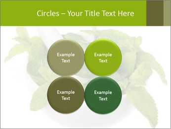 Mortar with mint isolated PowerPoint Templates - Slide 38