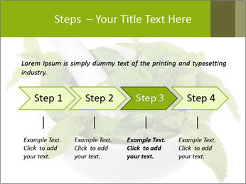 Mortar with mint isolated PowerPoint Template - Slide 4