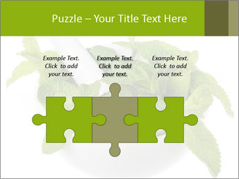Mortar with mint isolated PowerPoint Templates - Slide 42