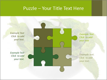 Mortar with mint isolated PowerPoint Template - Slide 43