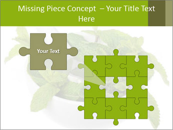 Mortar with mint isolated PowerPoint Template - Slide 45