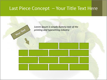 Mortar with mint isolated PowerPoint Template - Slide 46