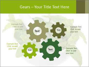 Mortar with mint isolated PowerPoint Template - Slide 47