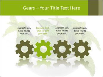Mortar with mint isolated PowerPoint Template - Slide 48