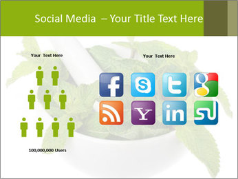 Mortar with mint isolated PowerPoint Template - Slide 5