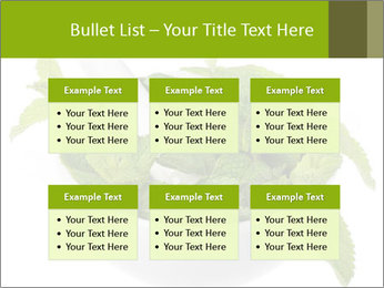 Mortar with mint isolated PowerPoint Templates - Slide 56