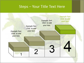 Mortar with mint isolated PowerPoint Template - Slide 64