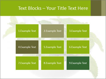 Mortar with mint isolated PowerPoint Template - Slide 68