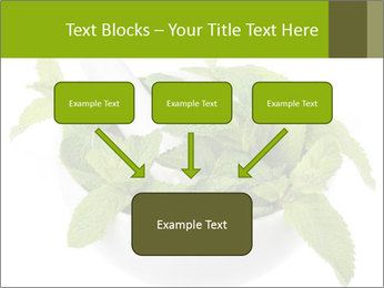 Mortar with mint isolated PowerPoint Template - Slide 70