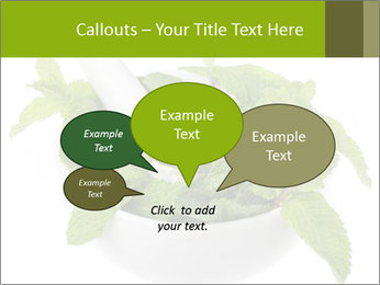 Mortar with mint isolated PowerPoint Template - Slide 73