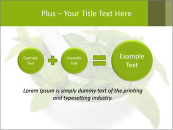 Mortar with mint isolated PowerPoint Template - Slide 75