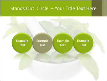 Mortar with mint isolated PowerPoint Template - Slide 76