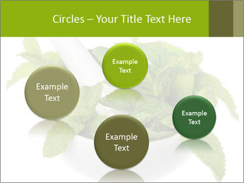 Mortar with mint isolated PowerPoint Template - Slide 77