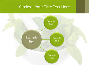 Mortar with mint isolated PowerPoint Template - Slide 79