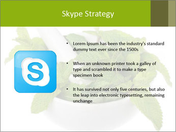 Mortar with mint isolated PowerPoint Template - Slide 8