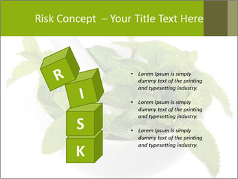 Mortar with mint isolated PowerPoint Template - Slide 81