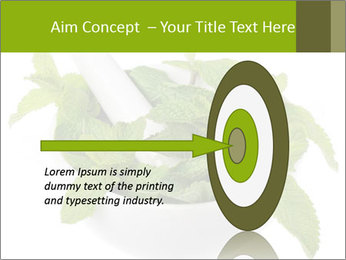 Mortar with mint isolated PowerPoint Template - Slide 83