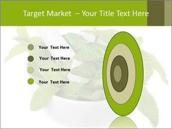 Mortar with mint isolated PowerPoint Template - Slide 84