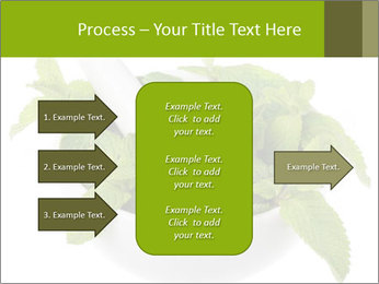 Mortar with mint isolated PowerPoint Template - Slide 85