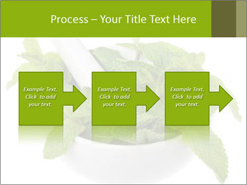 Mortar with mint isolated PowerPoint Template - Slide 88