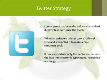Mortar with mint isolated PowerPoint Template - Slide 9