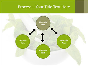 Mortar with mint isolated PowerPoint Template - Slide 91