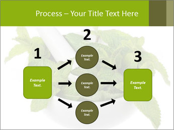 Mortar with mint isolated PowerPoint Template - Slide 92