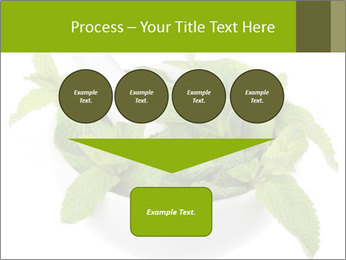 Mortar with mint isolated PowerPoint Template - Slide 93
