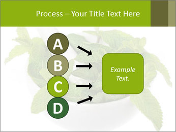 Mortar with mint isolated PowerPoint Template - Slide 94