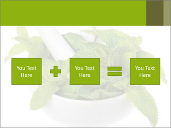 Mortar with mint isolated PowerPoint Template - Slide 95