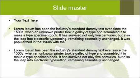 Mortar with mint isolated PowerPoint Template - Slide 2