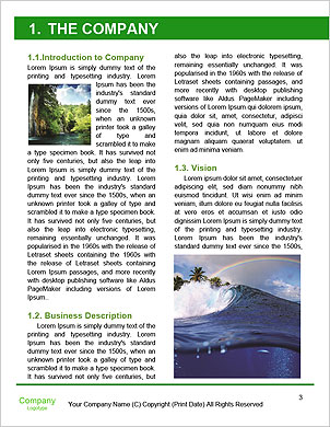0000090120 Word Template - Page 3