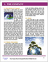 0000090122 Word Template - Page 3