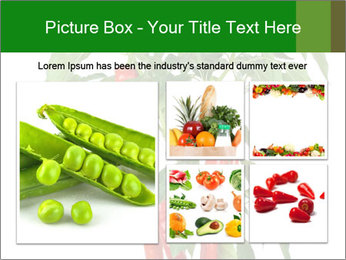Chili pepper plant PowerPoint Templates - Slide 19