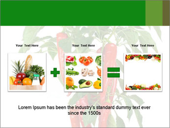 Chili pepper plant PowerPoint Templates - Slide 22