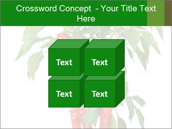 Chili pepper plant PowerPoint Templates - Slide 39