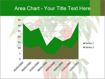 Chili pepper plant PowerPoint Templates - Slide 53
