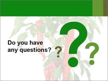 Chili pepper plant PowerPoint Templates - Slide 96