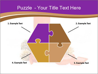 Candle PowerPoint Templates - Slide 40